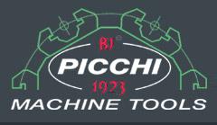 Logo Picchi
